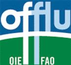 Мережа знань про грип тварин